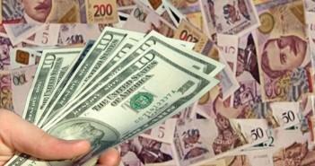 lari-dolari